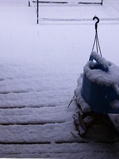 snow01